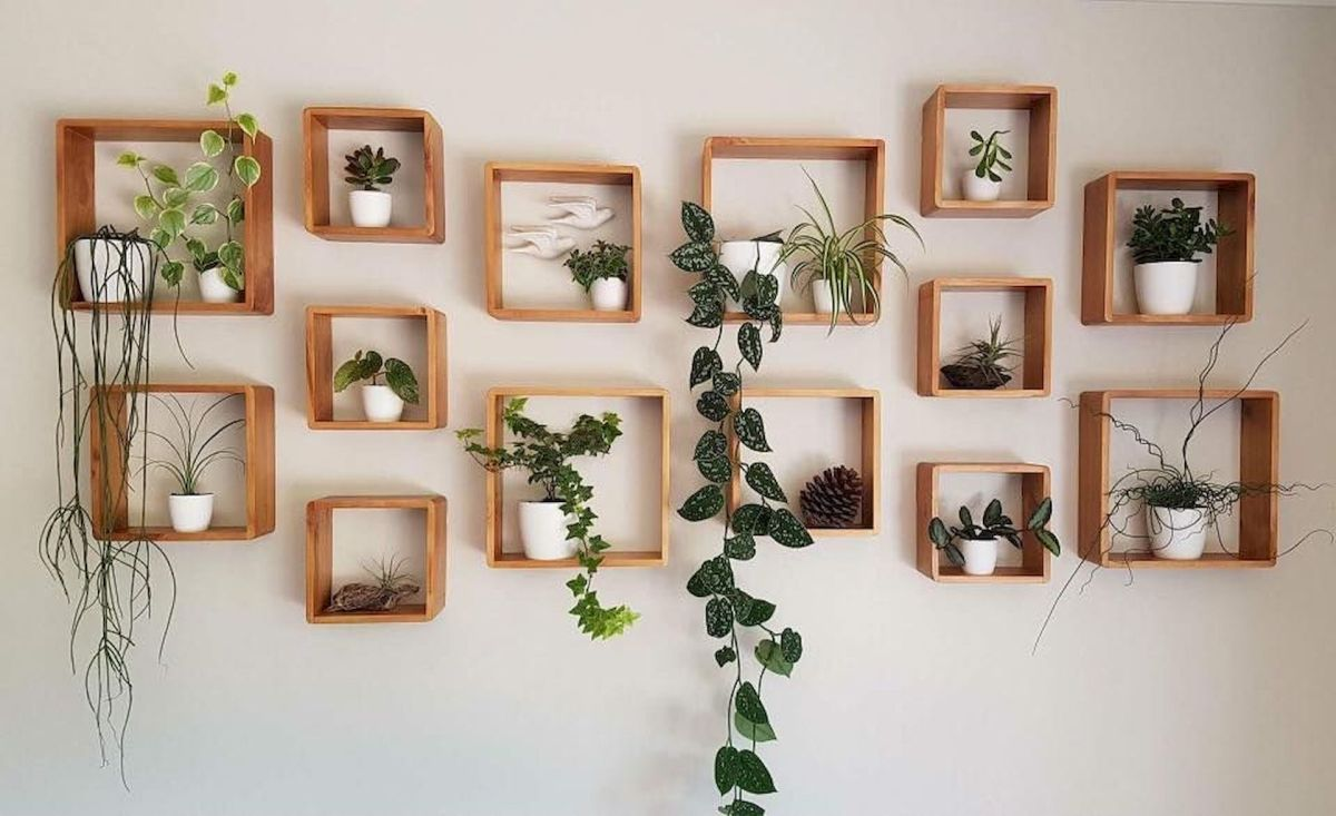 Amazing Life Plant Decorations Indoors