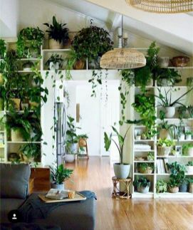 Life Plant Decorations for Indoor in Vertical Hanging Pots Part 58