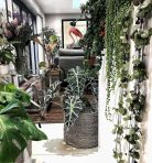 Life Plant Decorations for Indoor in Vertical Hanging Pots Part 60