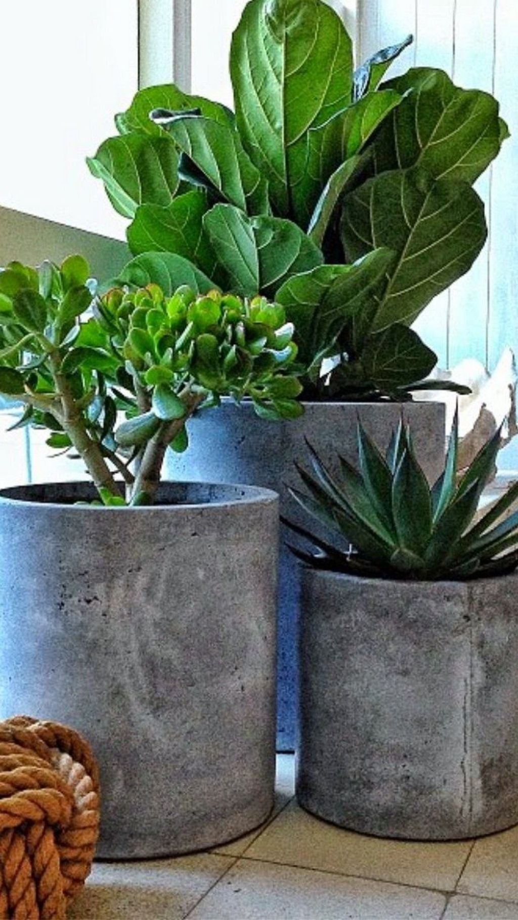 Creative DIY Planter designs out of scrap materials for inspiration Part 27