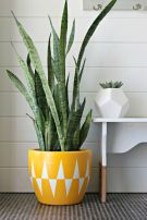 Creative DIY Planter designs out of scrap materials for inspiration Part 31