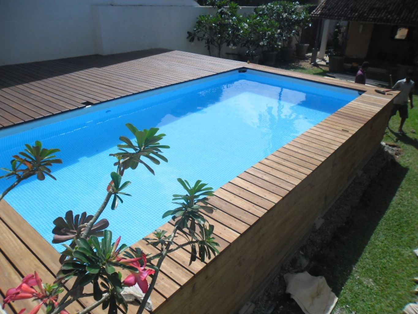 Inground tiny swimming pool in a small backyard that pick the best shape Part 2