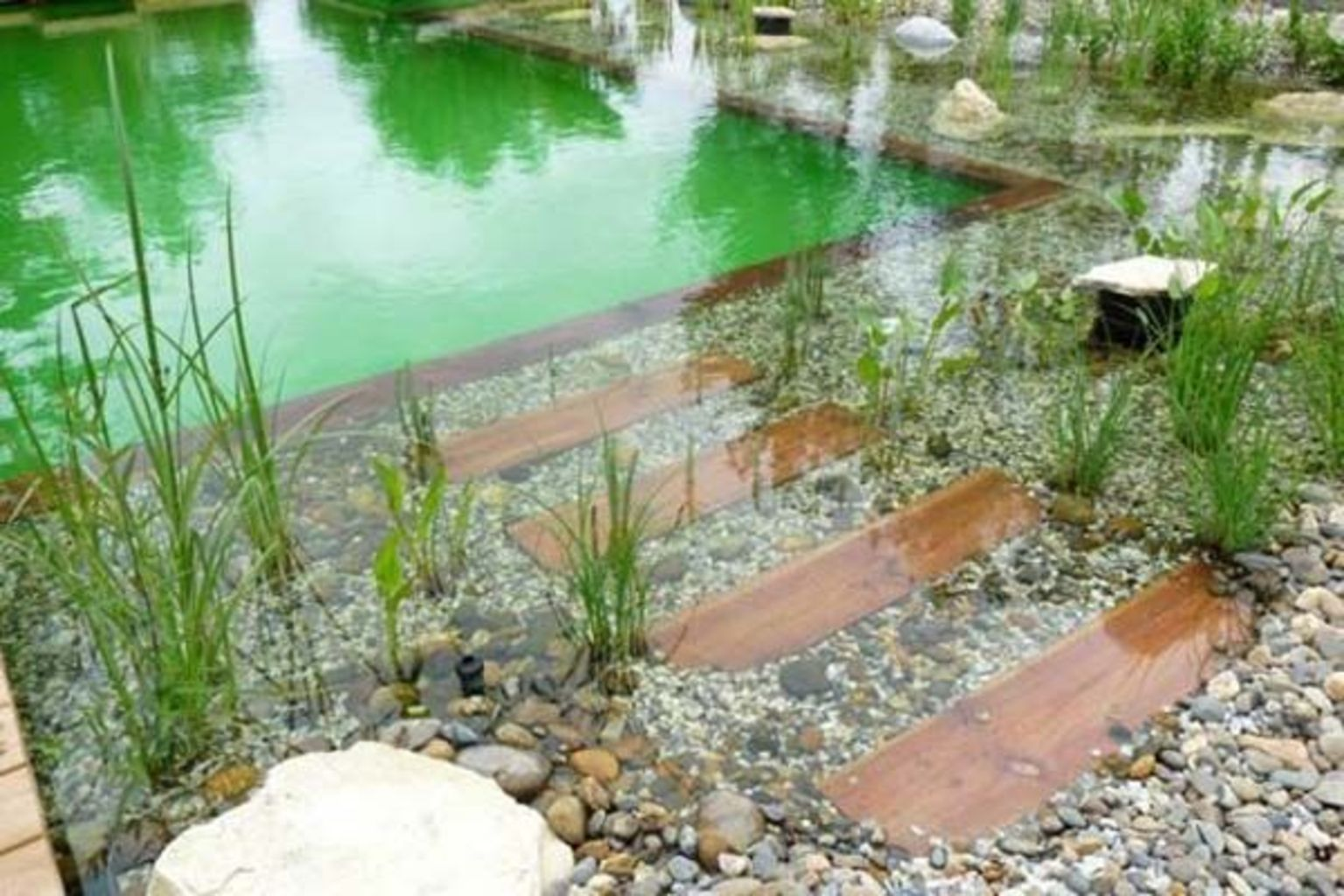 Natural swimming pools designs using plants or a combination of plants and sand filters Part 21