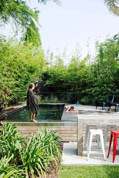 Natural swimming pools designs using plants or a combination of plants and sand filters Part 23