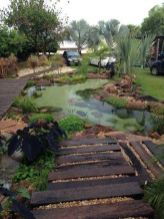 Natural swimming pools designs using plants or a combination of plants and sand filters Part 25
