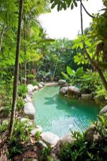Natural swimming pools designs using plants or a combination of plants and sand filters Part 26