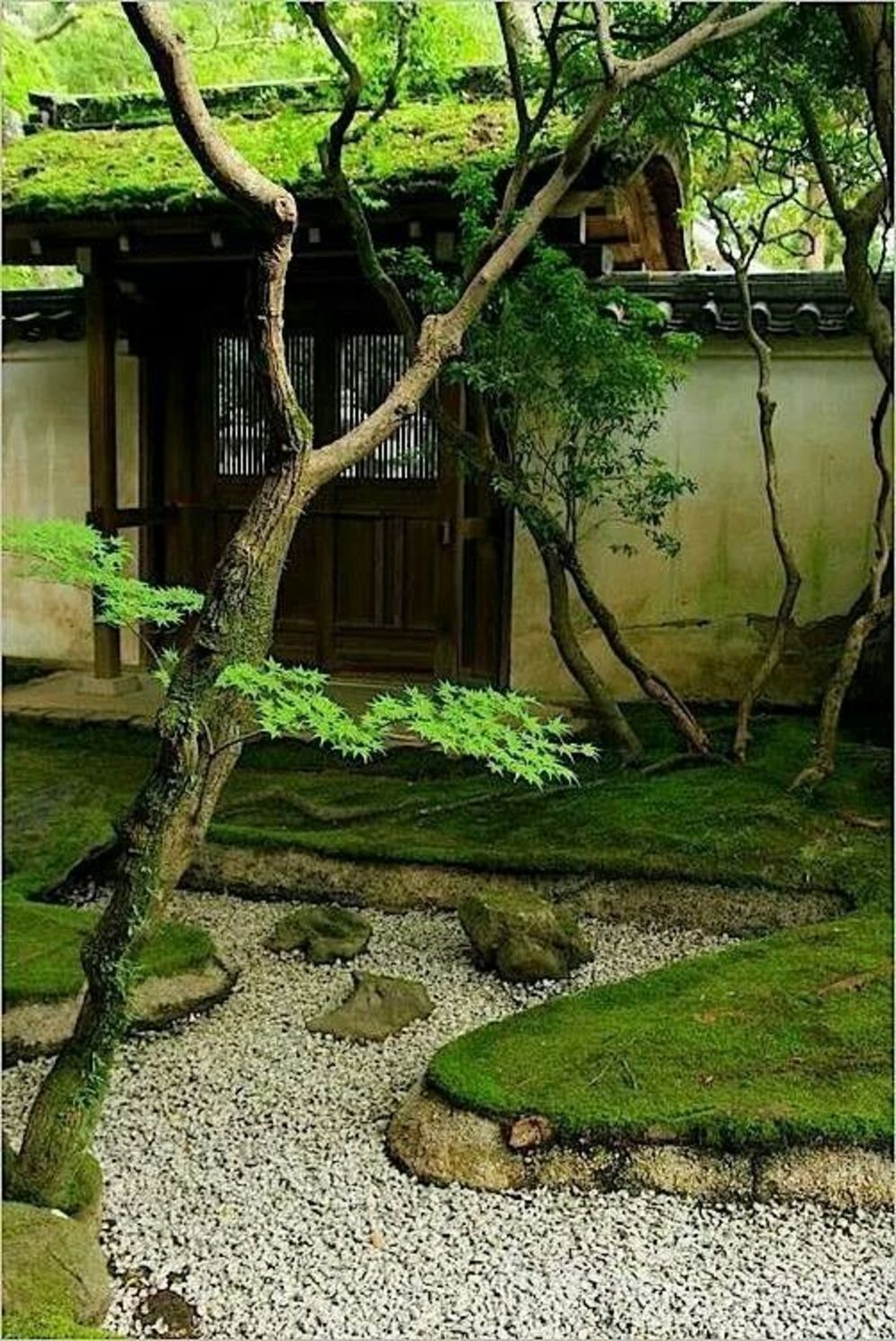 Beautiful Zen garden style with peaceful arrangements creating peaceful and harmonies display that will calm our mind Image 11