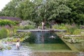 Best trending natural swimming pool with natural fresh cleanwater filter system (2)