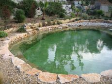 Best trending natural swimming pool with natural fresh cleanwater filter system (9)