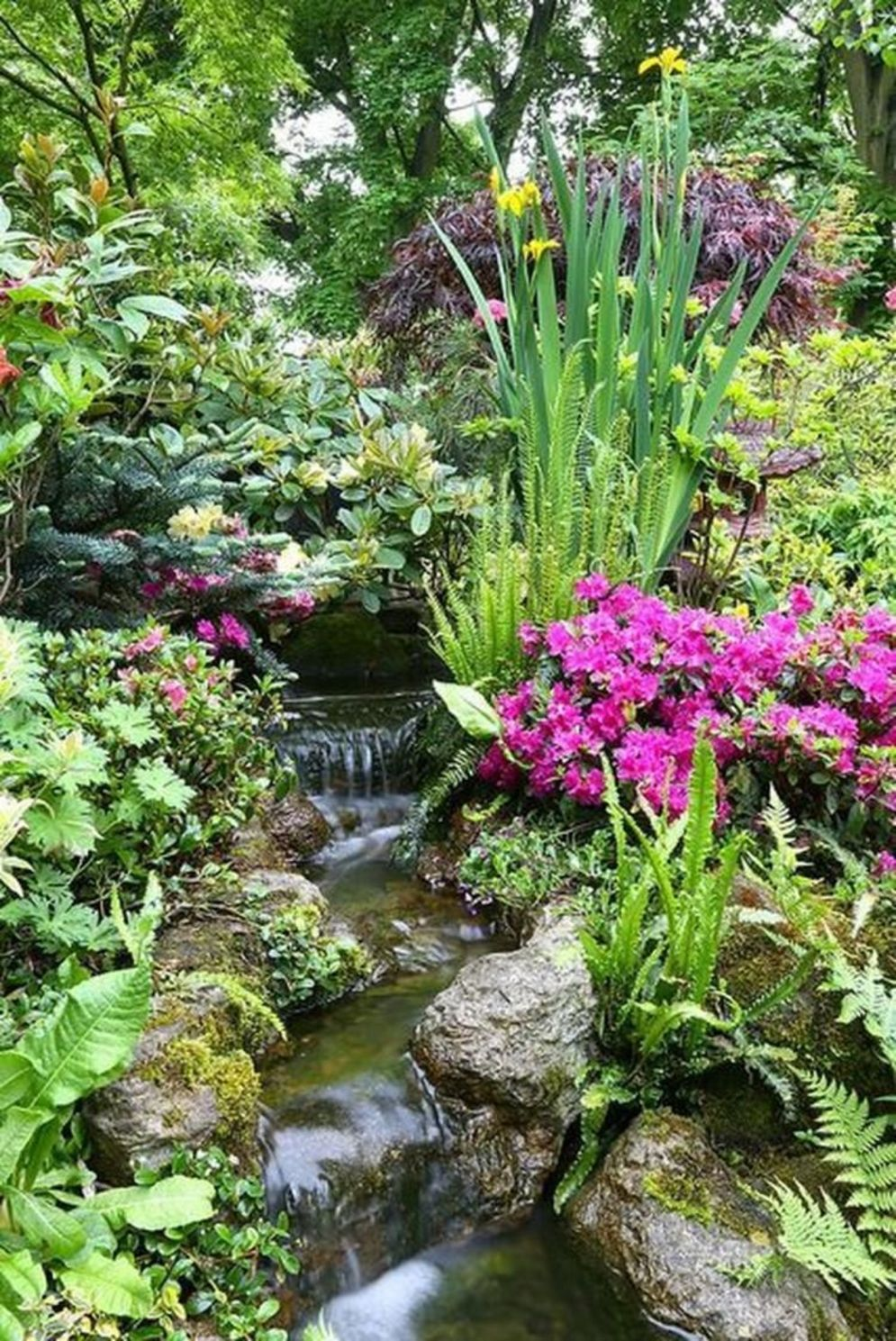Best water garden style rich of natural accents with stones and aquatic plants compositions Image 14