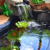 Brilliant landscape decoration of natural small fish ponds that you can make yourself Image 1