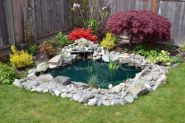 Clever exterior update showing different fresh fish pond designs Image 16