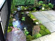 Clever exterior update showing different fresh fish pond designs Image 17