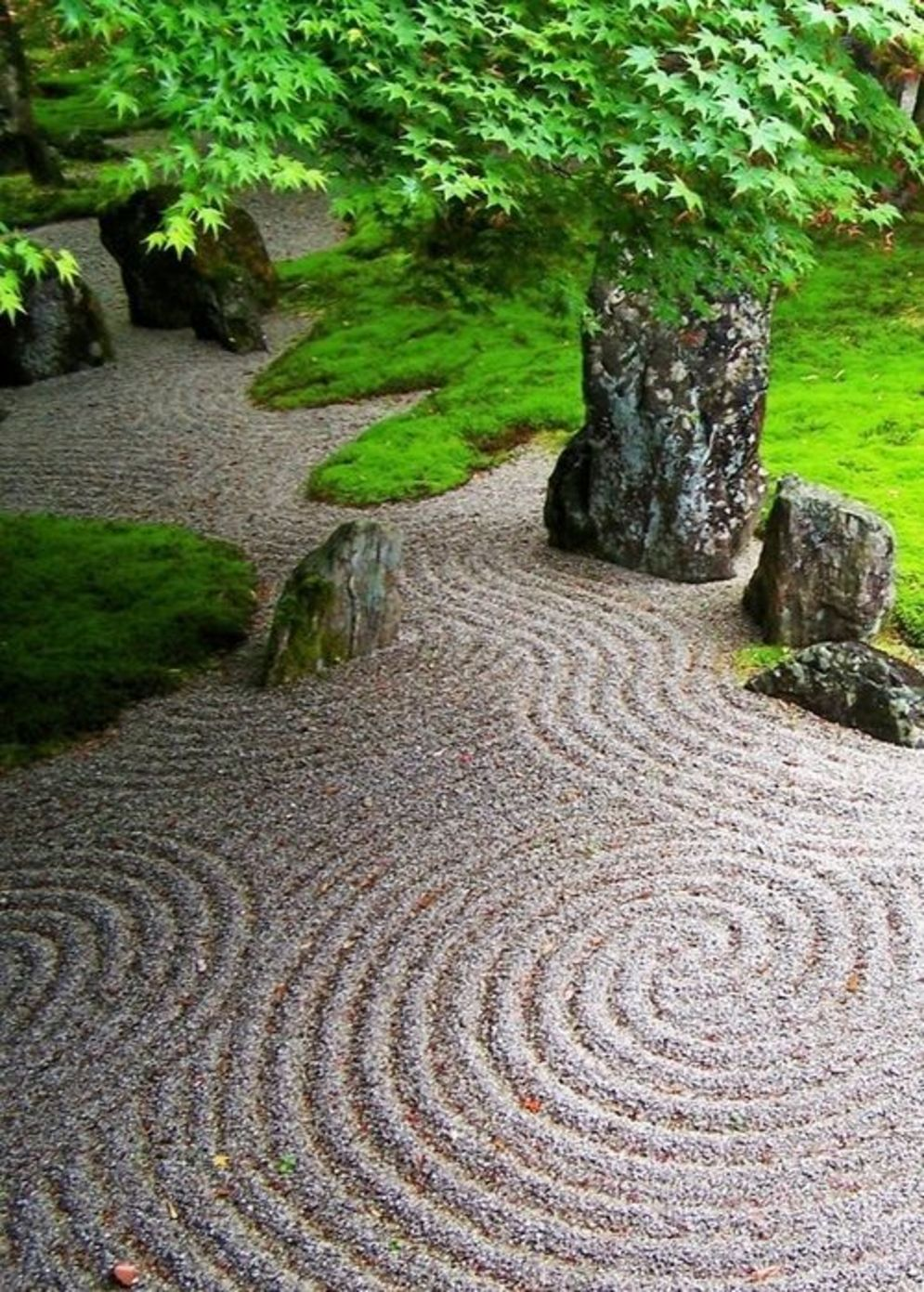 Green outdoor ideas with calming vibes from Zen garden style showing harmonious and balanced various natural elements Image 38