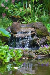 Inspiring small fish pond designs to upgrade the outdoor landscape for more lively and refreshing Image 24