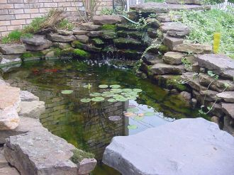 Inspiring small fish pond designs to upgrade the outdoor landscape for more lively and refreshing Image 26