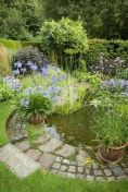 Water garden ideas for more natural backyard feeling with beautiful aquatic plants and ponds Image 19