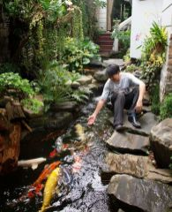 Water garden ideas for more natural backyard feeling with beautiful aquatic plants and ponds Image 33