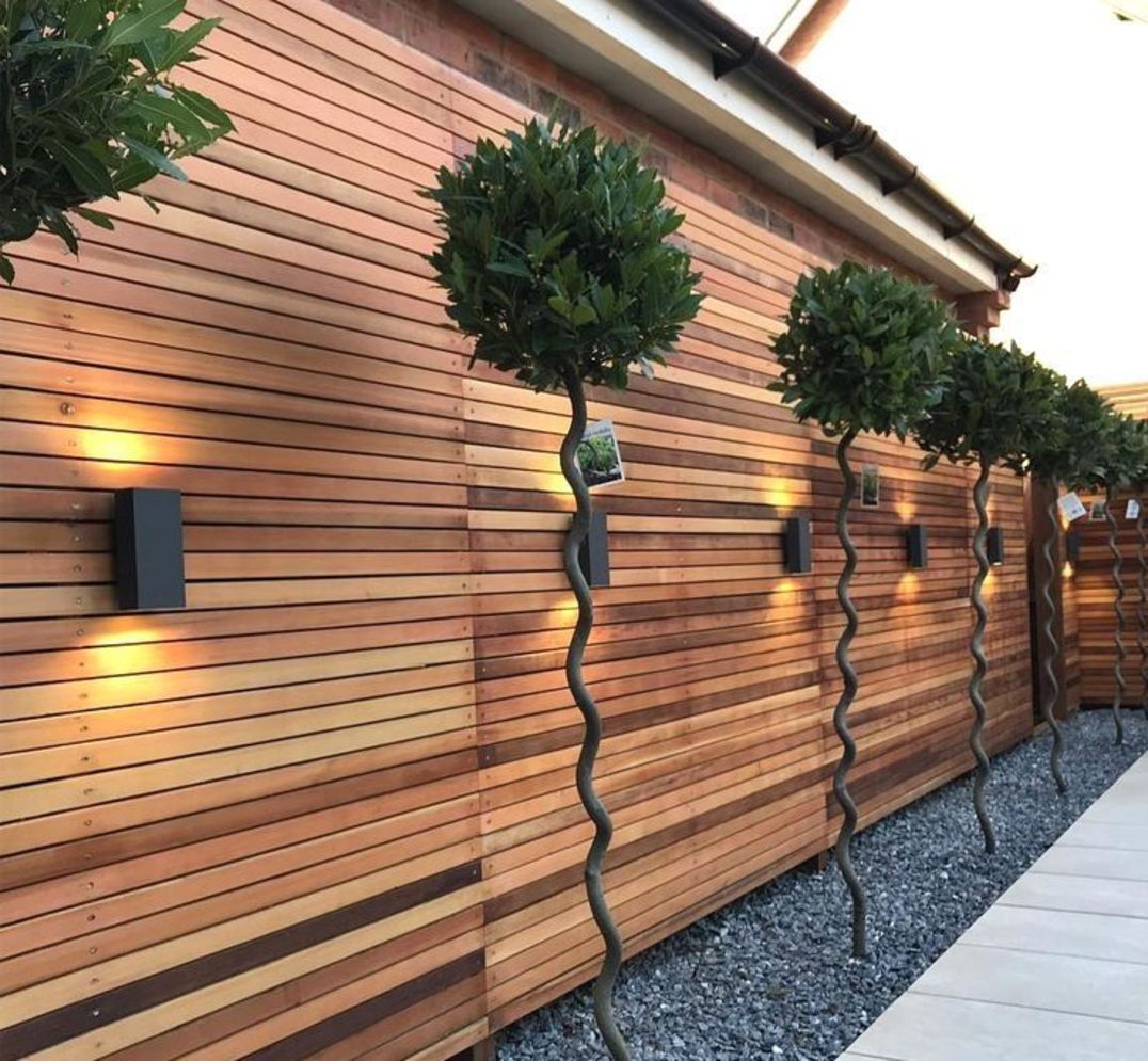 Lavish garden upgrade showing beautiful outdoor light schemes that liven up the landscape view Image 39