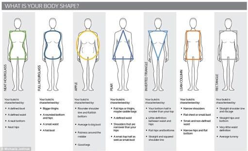 body shape whole