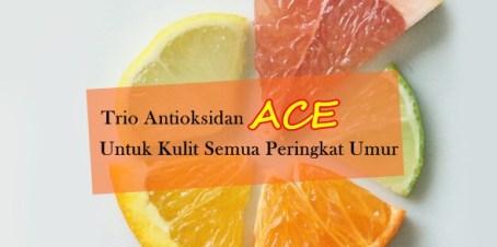fruit slice buah vitamin c