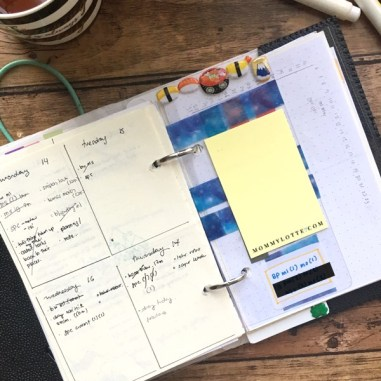 weekly spread, weekly layout, ring planner