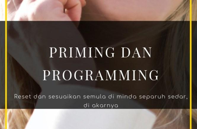 programming, minda, separuh sedar