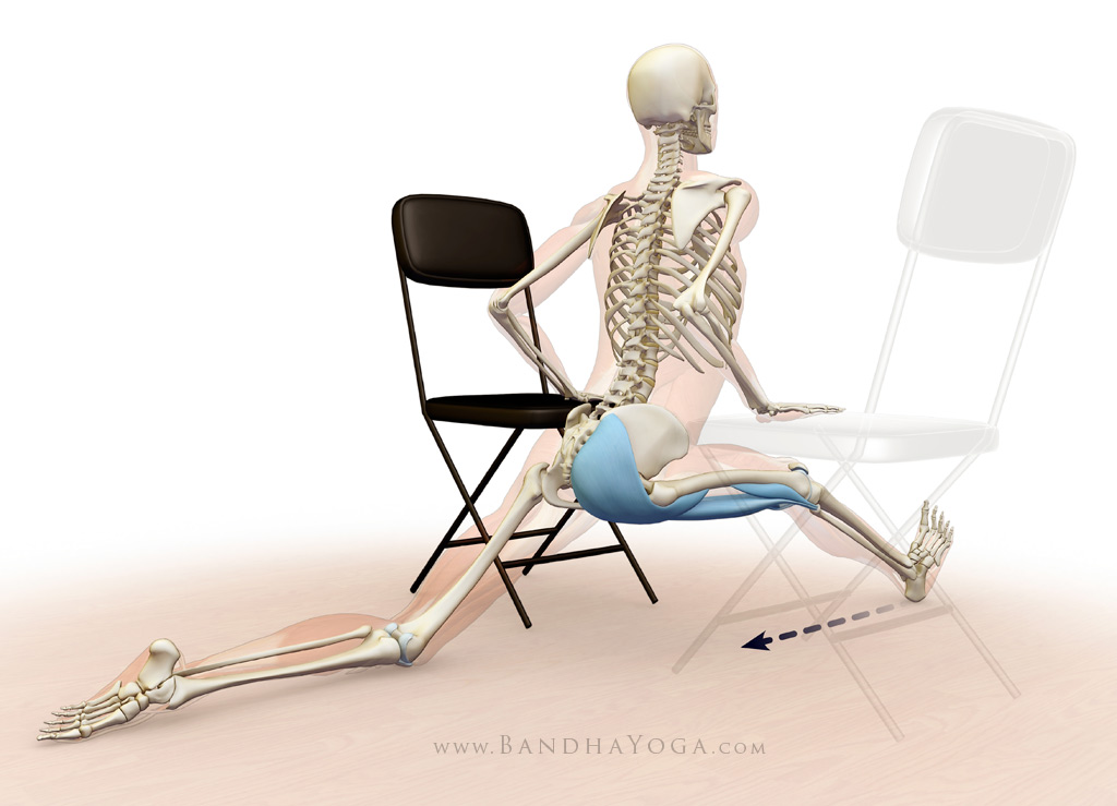 front leg gluteus maximus and hamstrings - hanumanasana stretch