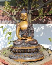 Amitabha Buddha- one of the most popular Dhyani Buddhas
