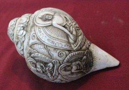Five dhyani Pancha buddha conch shell