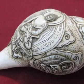 Five dhyani buddha conch shell shankha