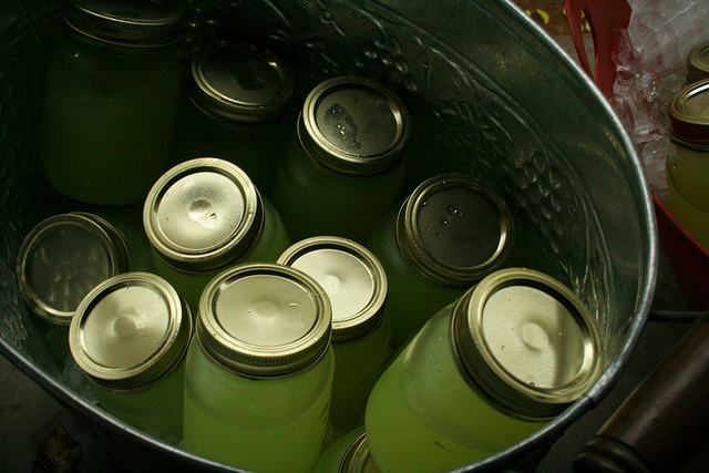ball jars on Shalavee.com