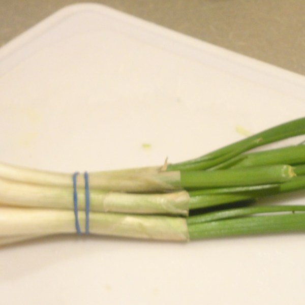 This is How My Green Onions Grew