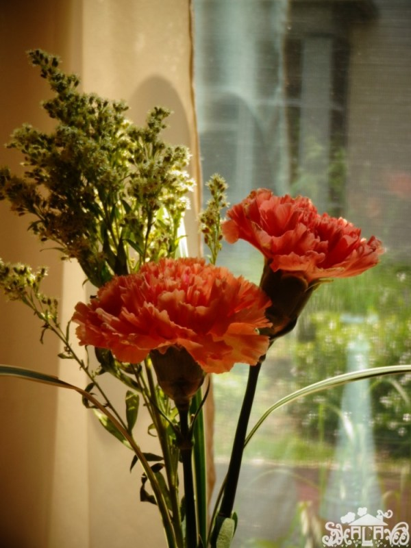 Salmon carnations and soldago from Shalavee.com
