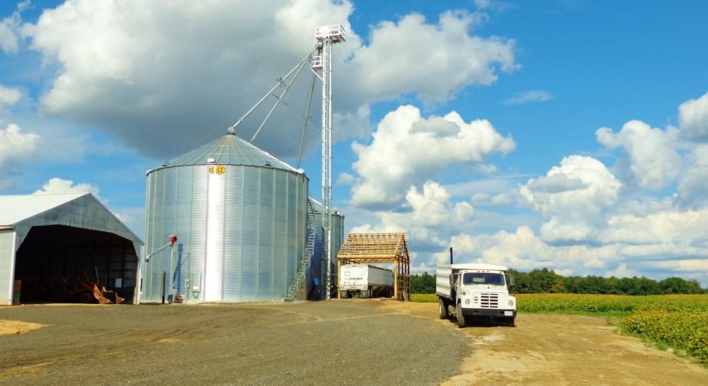 Grain silo on Eastern Shore farmland on Shalavee.com