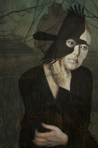 crow country by sarah jarrod from Shalavee.com