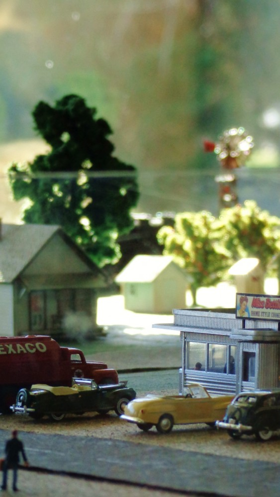 train garden from Champagne Clarity on Shalavee.com