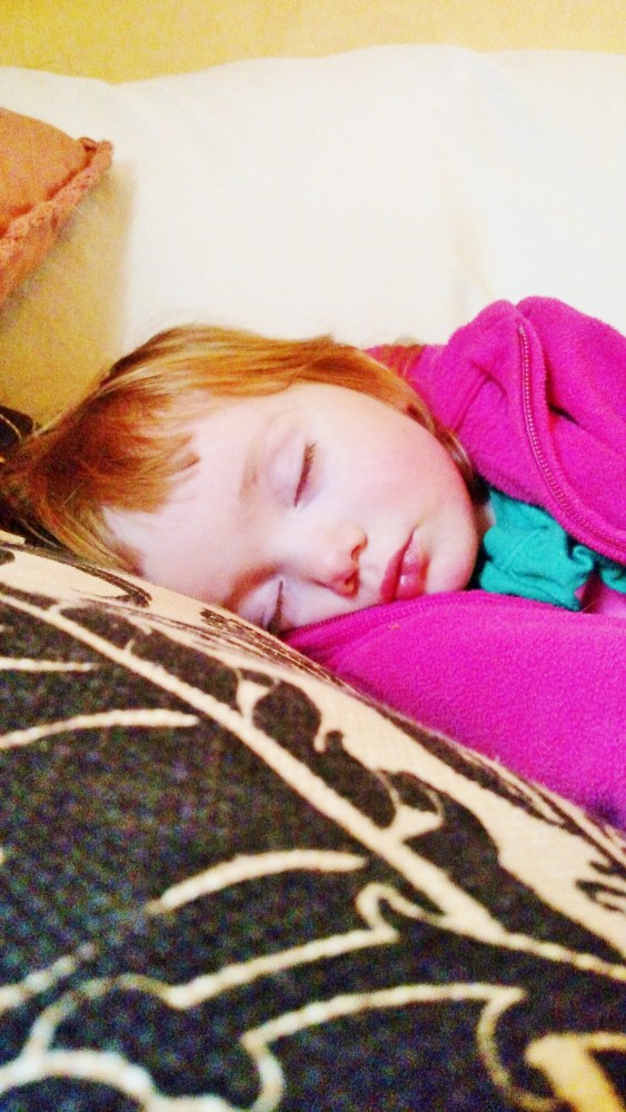 sleeping Fi on the Necessity of Nap Time on Shalavee.com