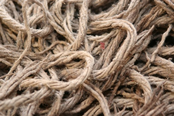 string mop from Shalavee.com