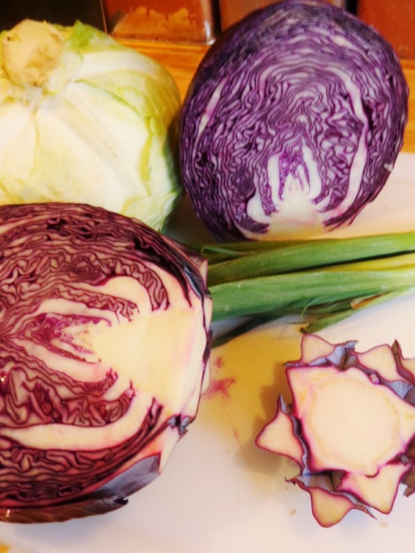 purple cabbage on Shalavee.com