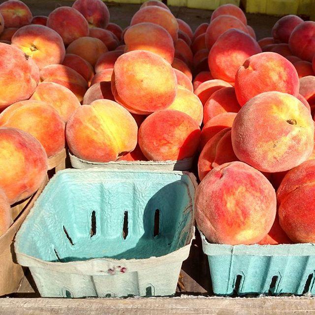 Peaches on Shalavee.com