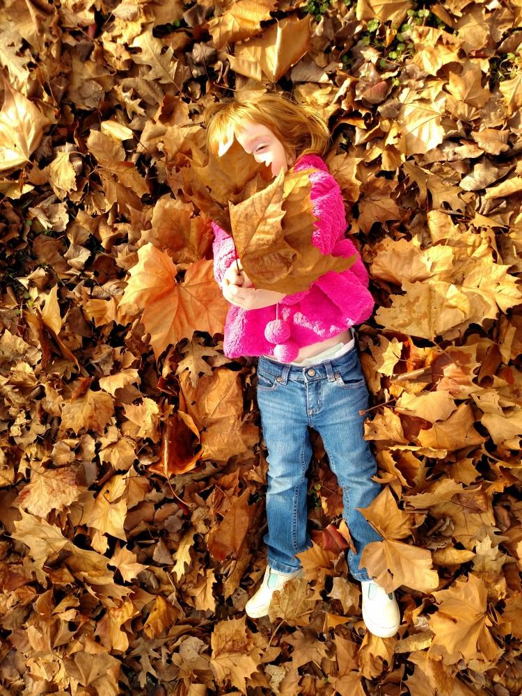 embracing Fall on Shalavee.com