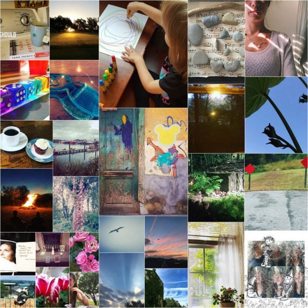 The Fall Soul Selfie Challenge of 2017 Wrap-Up
