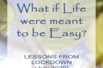A Published Essay on Lessons in the Time of Lockdown