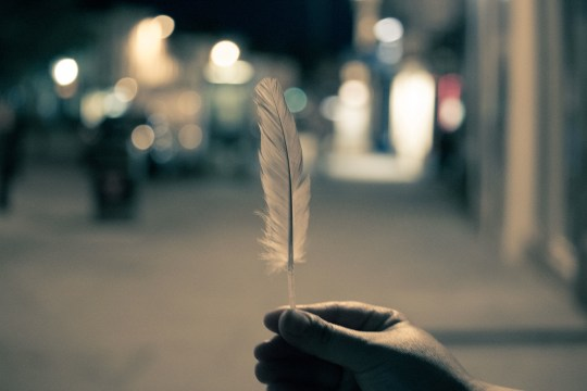 April eNews: Only a Feather