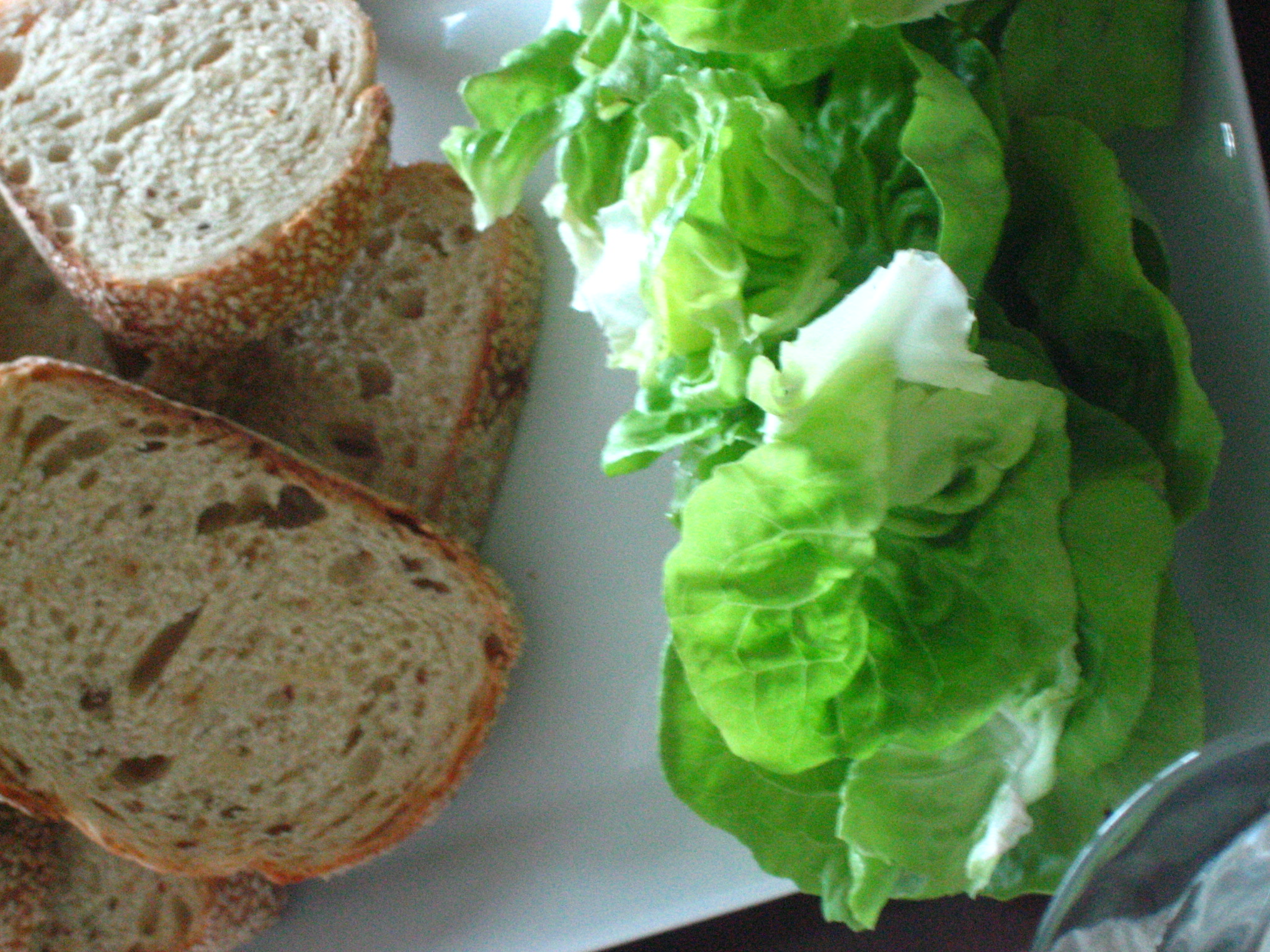 Bread and Butter (Lettuce)