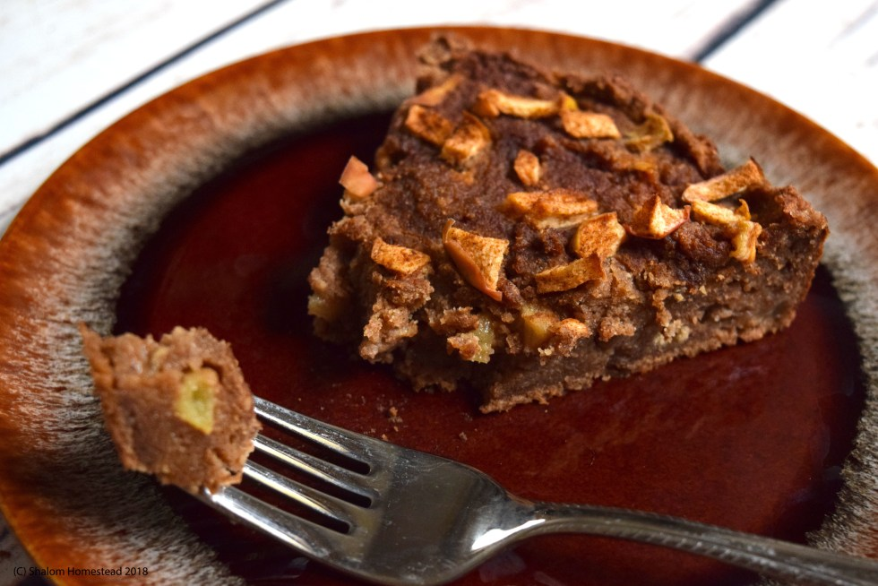 Apple Cinnamon Cake #vegan #grainfree #glutenfree #oilfree