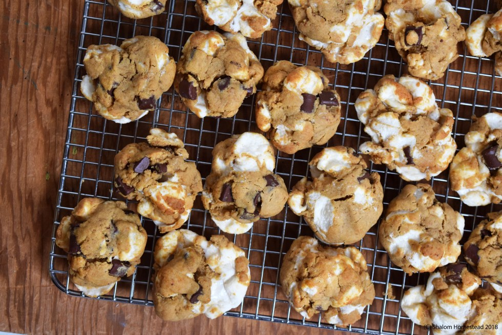 smores cookies #vegan #glutenfree