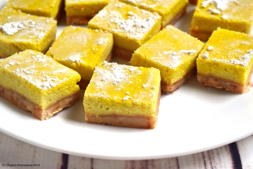 lemon bars #vegan #grainfree #glutenfree