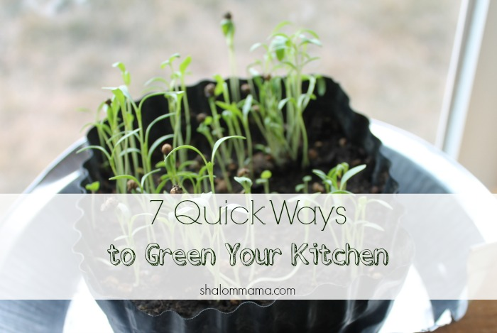 7 Quick Ways to Green Your Kitchen